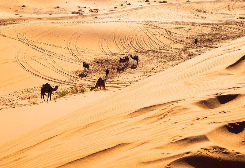 Vive una experiencia nómada en Marreucos con The Best Morocco