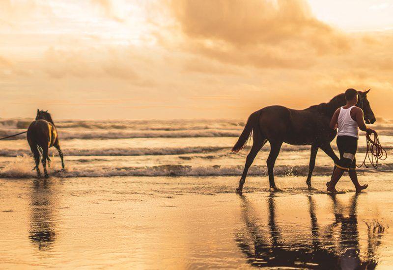 Rutas a caballo por Marruecos.