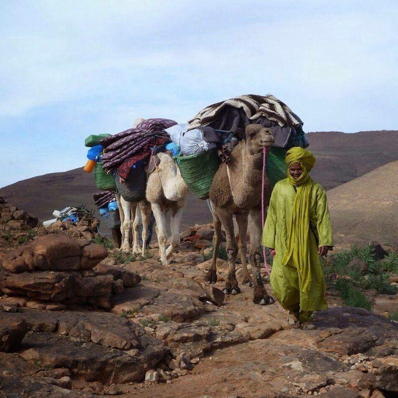 Tekking en el Gran Atlas con The Best Morocco. Marruecos.